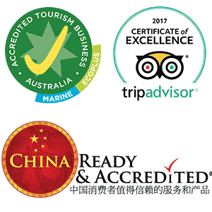 Series of certifications achieved by Mandurah Cruises - China Ready, TripAdvisor Excellence and EcoTour accredited