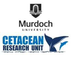 Mandurah Dolphin Research Project