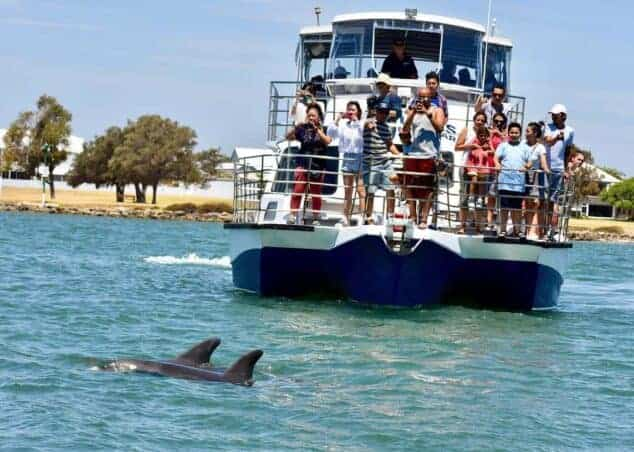 Dolphin & Scenic Canal Cruise