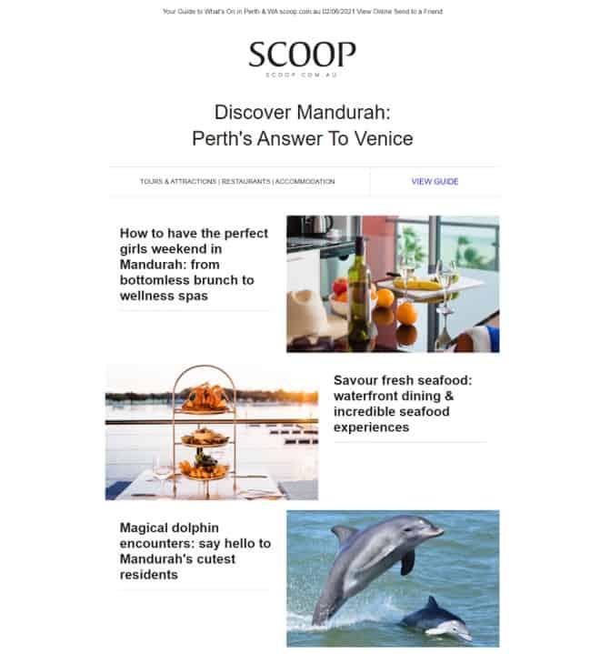 Scoop Digital Article